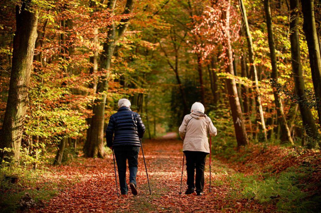 deux personnes âgées qui se promènent dans une forêt d'automne
